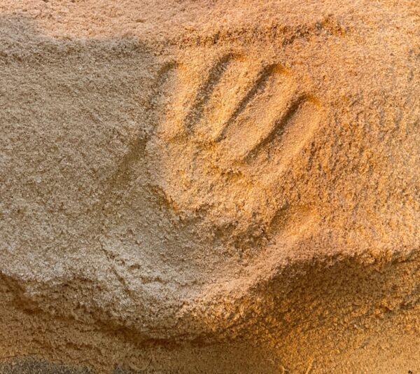 Hand Print in sawdust